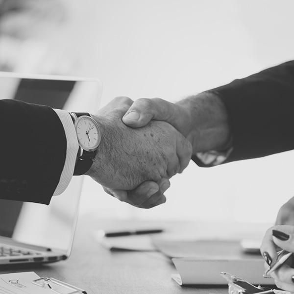 Alliance And Partnerships